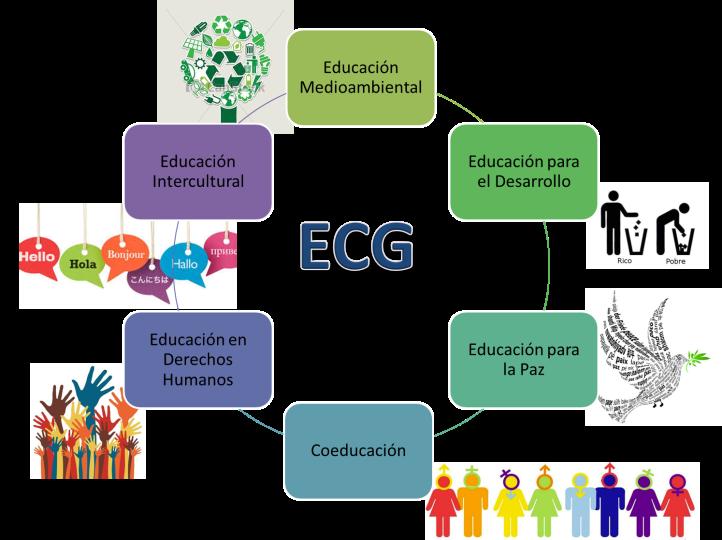 elementos ECG